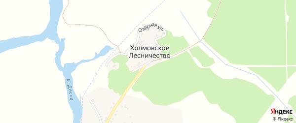 Холмовская улица на карте поселка Белой Березки с номерами домов