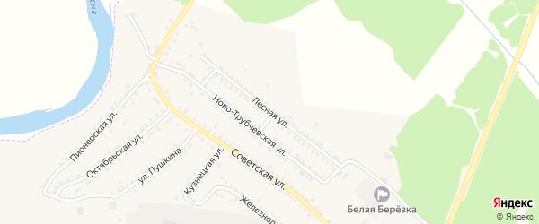 Лесная улица на карте поселка Белой Березки с номерами домов