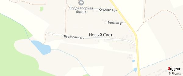 Березовая улица на карте поселка Нового Света с номерами домов