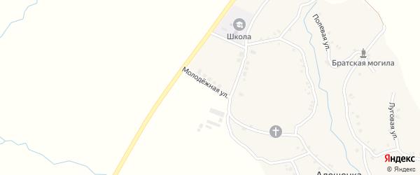Молодежная улица на карте села Алешенки с номерами домов
