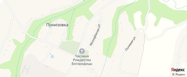 Молодежная улица на карте деревни Давыдчичи с номерами домов