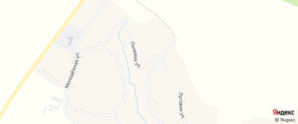 Полевая улица на карте села Алешенки с номерами домов