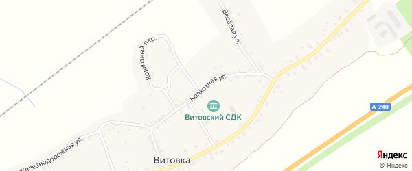 Колхозная улица на карте села Витовки с номерами домов