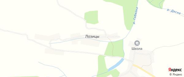 Карта деревни Лозицы в Брянской области с улицами и номерами домов