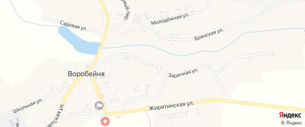 Заречная улица на карте села Воробейни с номерами домов