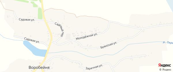 Молодежная улица на карте села Воробейни с номерами домов