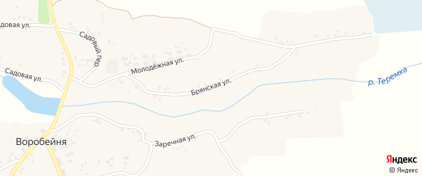 Брянская улица на карте села Воробейни с номерами домов