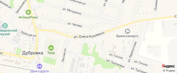 Улица Олега Кошевого на карте поселка Дубровки с номерами домов