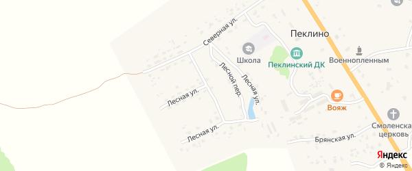 Лесная улица на карте деревни Пеклино с номерами домов