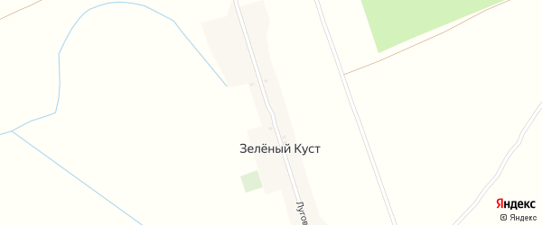 Луговая улица на карте поселка Зеленого Куста с номерами домов
