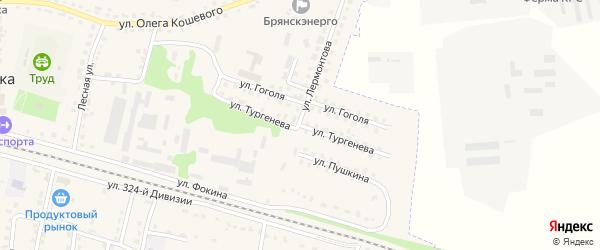 Улица Тургенева на карте поселка Дубровки с номерами домов