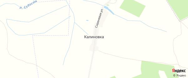 Карта деревни Калиновки в Брянской области с улицами и номерами домов
