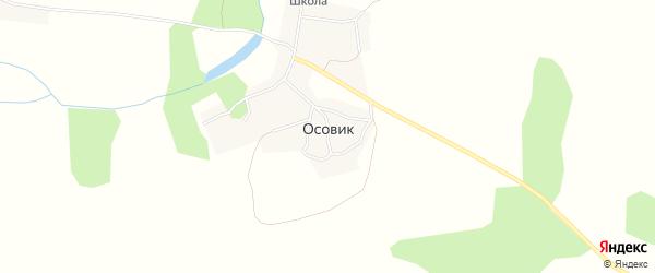 Карта села Осовика в Брянской области с улицами и номерами домов