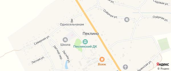 Территория Паи Слава на карте территории Пеклинского сельского поселения с номерами домов