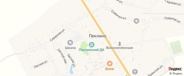 Территория Паи Калинина на карте территории Пеклинского сельского поселения с номерами домов