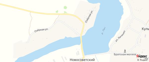Озерная улица на карте Новосоветского поселка с номерами домов