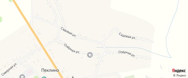 Садовая улица на карте деревни Пеклино с номерами домов