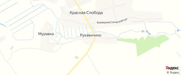 Карта деревни Рукавичино в Брянской области с улицами и номерами домов