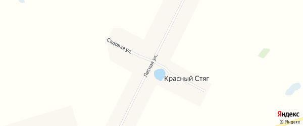 Лесная улица на карте поселка Красного Стяга с номерами домов