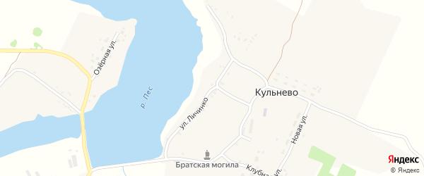 Улица Личинко на карте села Кульнево с номерами домов
