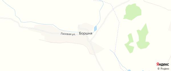 Карта деревни Боршни в Брянской области с улицами и номерами домов