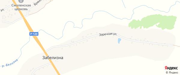 Заречная улица на карте деревни Забелизна с номерами домов