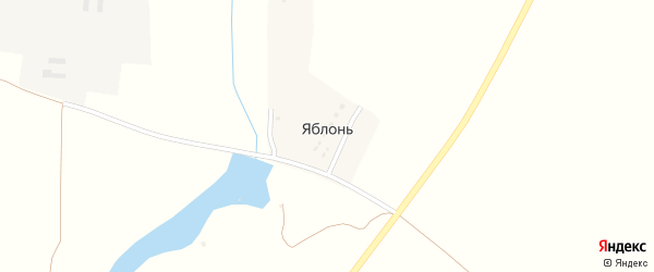 Речная улица на карте деревни Яблонь с номерами домов