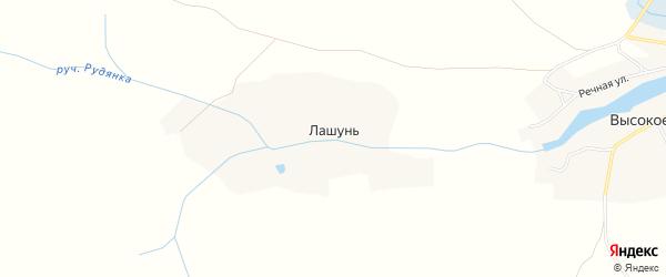 Карта деревни Лашуни в Брянской области с улицами и номерами домов