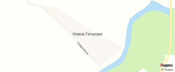 Озерная улица на карте деревни Новое Гатьково с номерами домов