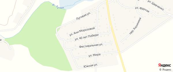 Улица 40 лет Победы на карте поселка Рогнедино с номерами домов