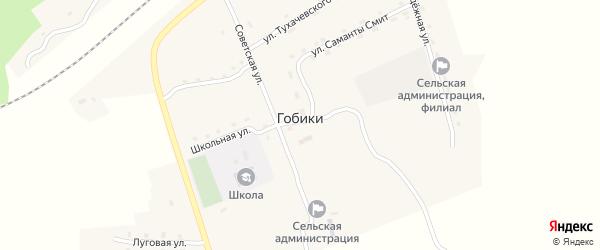 Сельская улица на карте поселка Гобики с номерами домов