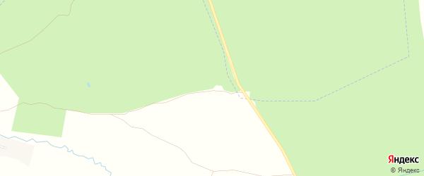 Карта Пикуринского поселка в Брянской области с улицами и номерами домов