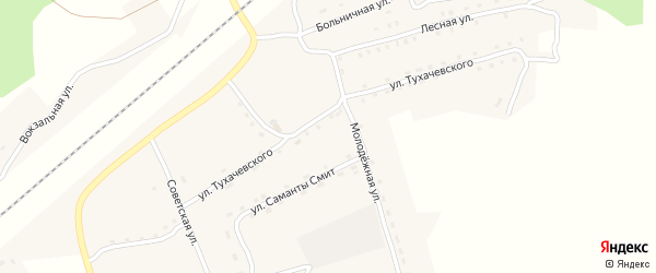 Сельская улица на карте деревни Гобики с номерами домов