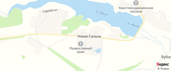 Карта деревни Старой Салыни в Брянской области с улицами и номерами домов