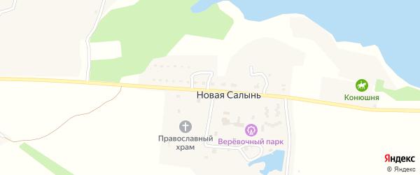 Садовая улица на карте деревни Старой Салыни с номерами домов