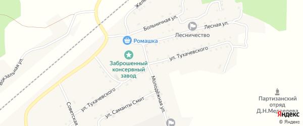 Улица Тухачевского на карте поселка Гобики с номерами домов