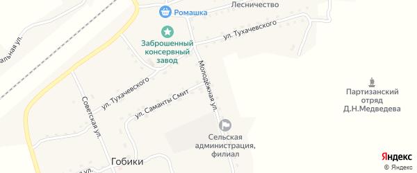 Молодежная улица на карте поселка Гобики с номерами домов