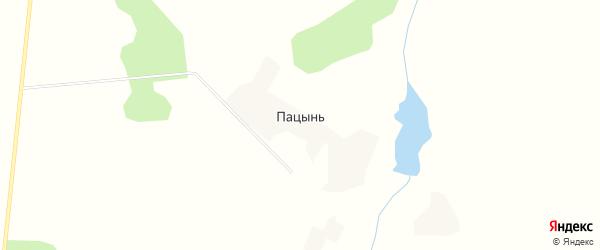 Карта села Пацыни в Брянской области с улицами и номерами домов