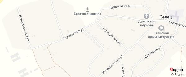 Улица Специалистов на карте села Сельца с номерами домов