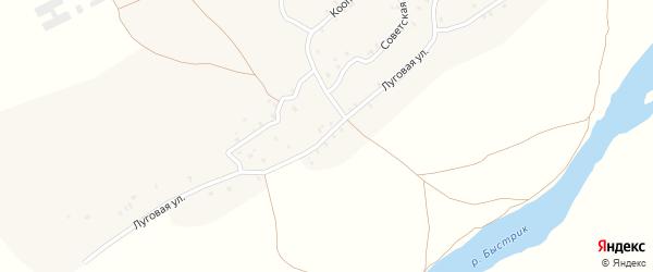 Луговая улица на карте села Сельца с номерами домов