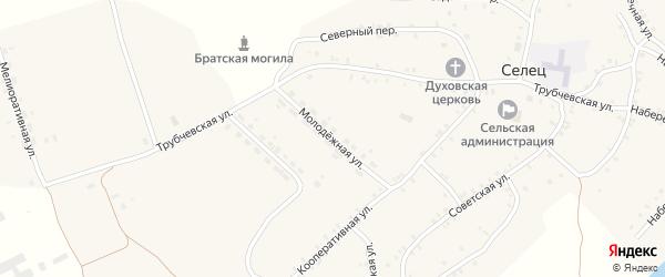 Молодежная улица на карте села Сельца с номерами домов