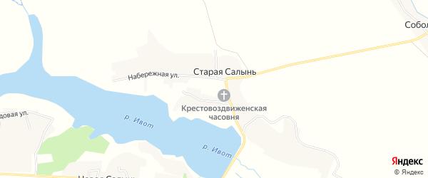 Карта деревни Новой Салыни в Брянской области с улицами и номерами домов