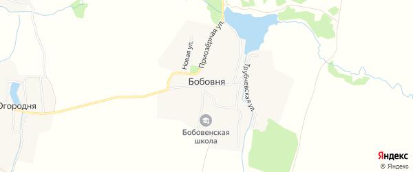 Карта деревни Бобовни в Брянской области с улицами и номерами домов
