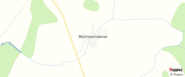 Карта деревни Желтоноговичи в Брянской области с улицами и номерами домов