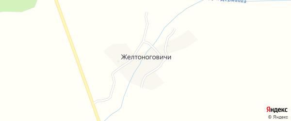 Лесная улица на карте деревни Желтоноговичи с номерами домов