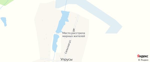 Сельская улица на карте деревни Упрусы с номерами домов