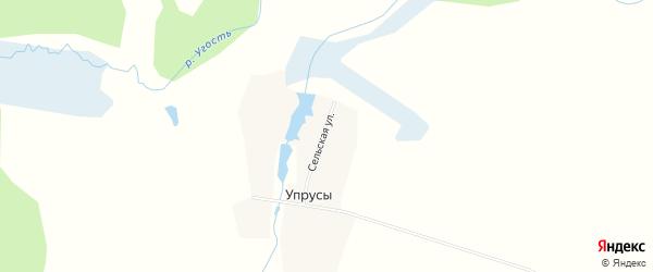 Карта деревни Упрусы в Брянской области с улицами и номерами домов