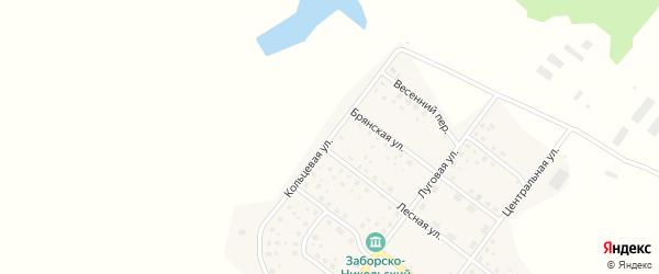 Кольцевая улица на карте деревни Никольской Слободы с номерами домов