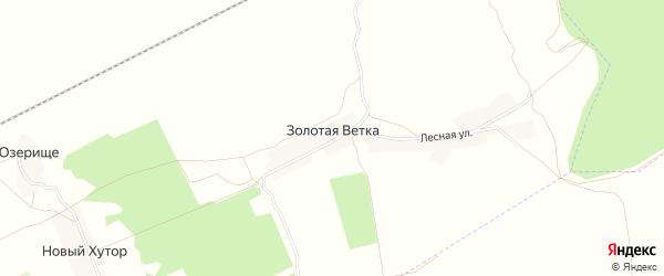 Карта поселка Золотой Ветки в Брянской области с улицами и номерами домов