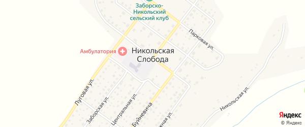 Переулок Юность на карте деревни Никольской Слободы с номерами домов